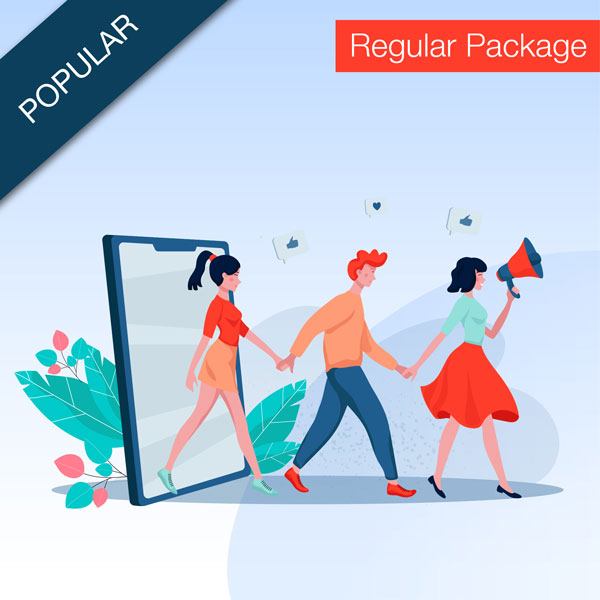 Social media regular package